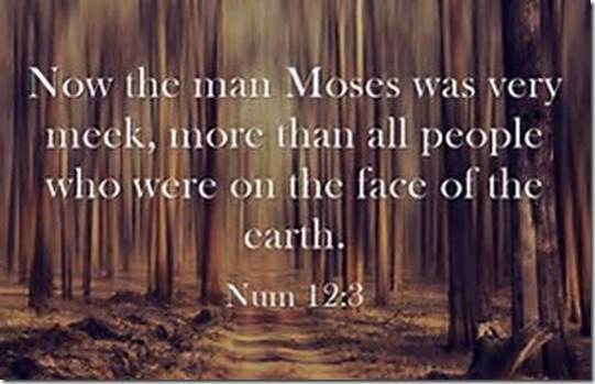 Meekness of Moses