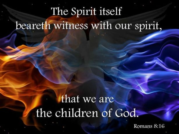 Spirits In Witness